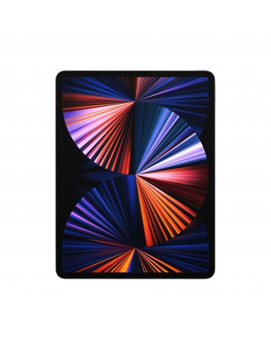 apple-ipad-pro-2021-129-1tb-wifi-gris-espacial-1.jpg