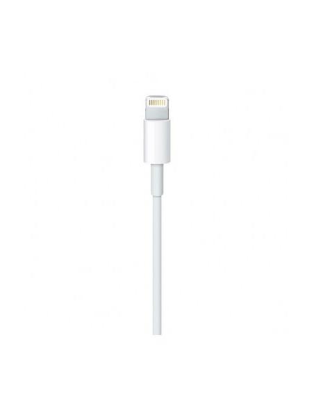 apple-cable-lightning-a-usb-2-metros-5.jpg
